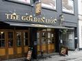 Golden Lion 2.jpg